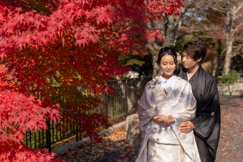 秋の紅葉<br>ロケーション