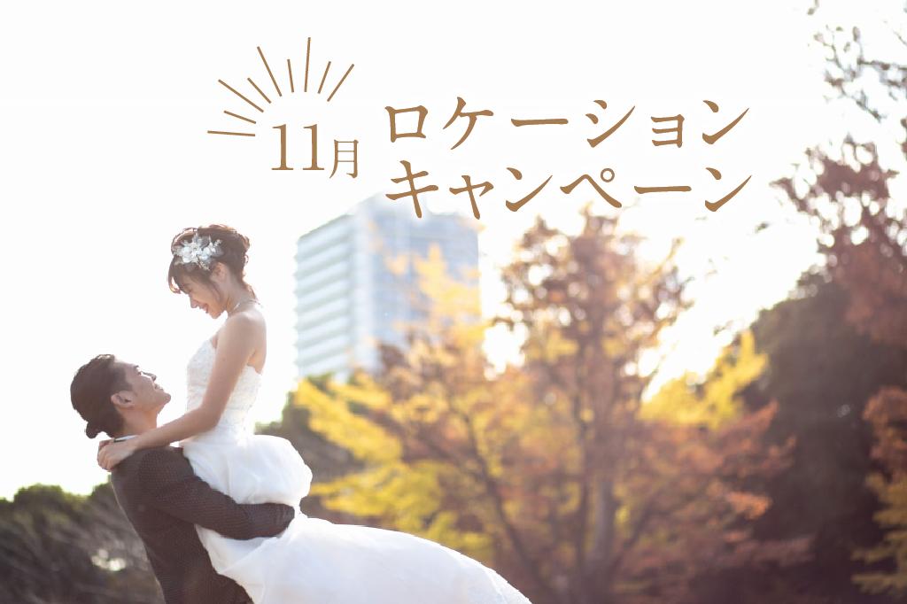 ロケーション写真<br>11月限定<br>キャンペーン